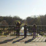Family Fun at Fort Worth Botanic Garden