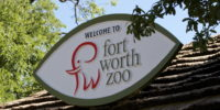 The Fort Worth Zoo is ranked among the top 5 zoos in the nation!