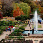 Spring has Sprung for Fort Worth Fun