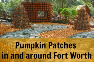 2014 pumpkin patch guide