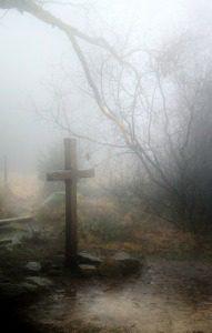 fog-258224_1280