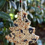 DIY Bird Seed Ornaments with Calloway's Nursery {Sponsored}
