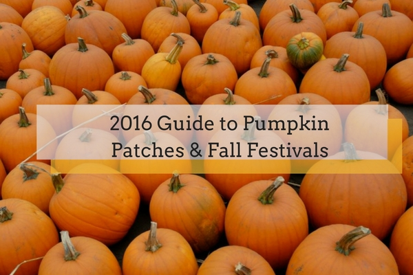 pumpkin patches and fall festivals