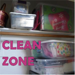 clean organization