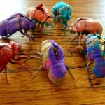 Dog Day Cicada Summer {How to Hunt for Cicadas with Your Kids}