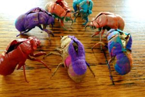 painted insects