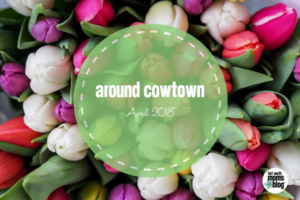April Cowtown Featured-2