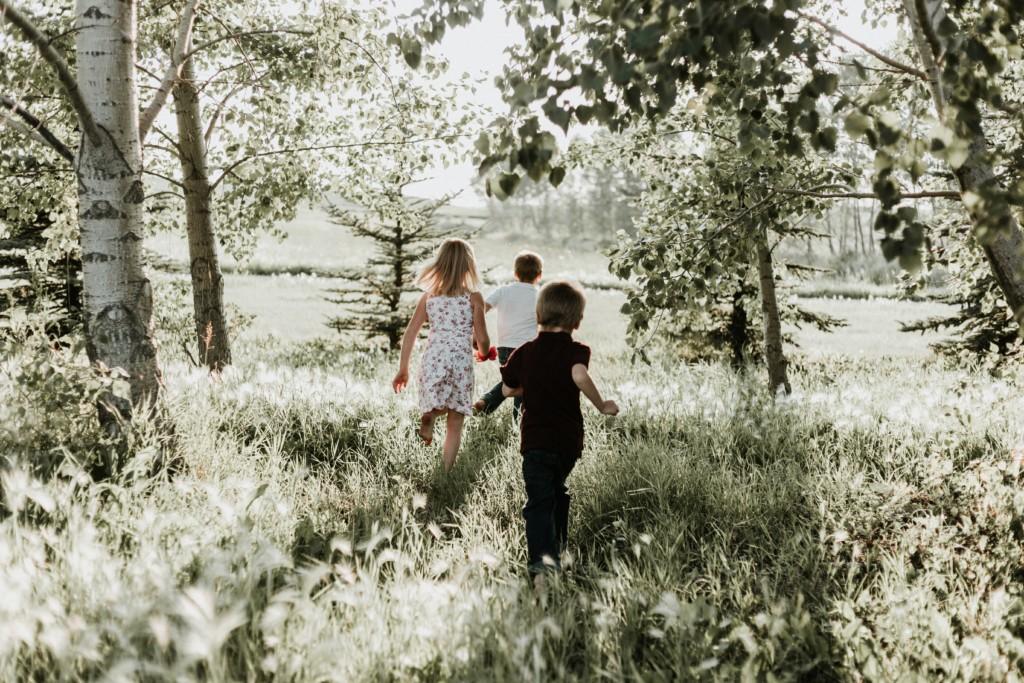 Childen Walking in Trees
