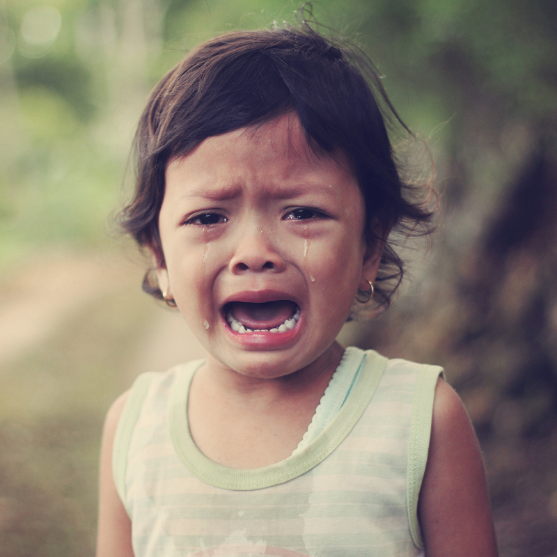 Toddlers experience lots of emotions and can cry during temper tantrums.