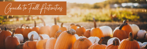 fall-guide-image