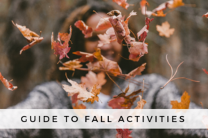 fall guide post image