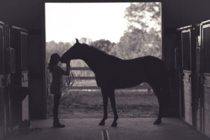 kissing a horse