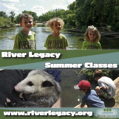 Attend summer camp classes at River Legacy.
