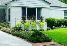 Tips for maintaining your yard and lawn all year long