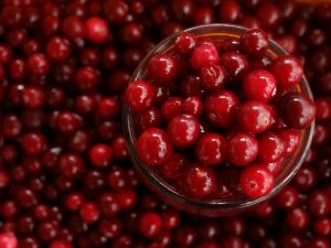 Try these delicious cranberry recipes this fall.