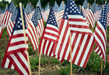 Placing American flags in your yard is a great way to show appreciation on Veterans Day.