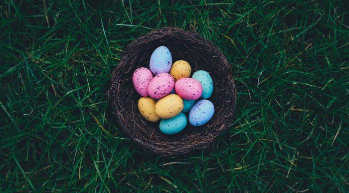 Plan an Easter egg hunt.